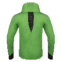 Delano jacket green back